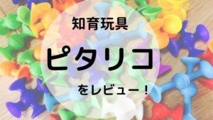 リーズナブルな知育玩具「ピタリコ」購入!PitaRikoレビュー