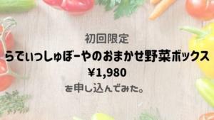 初回限定らでぃっしゅぼーやのおまかせ野菜ボックス1,980円を申し込んでみた